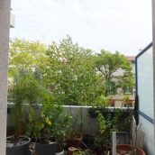 Appt Patte D Oie T3 Terrasse Garage Toulouse1