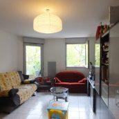Appt Patte D Oie T3 Terrasse Garage Toulouse2