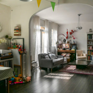 Appartement-toulouse-fer-a-cheval-saint-cyprien-2