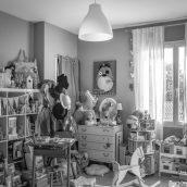 Appartement-toulouse-fer-a-cheval-saint-cyprien-21