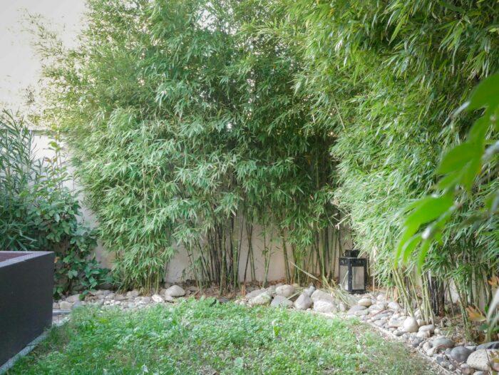 Fontaine Lestang - Belle maison familiale avec jardin et piscine - très belles prestations ...